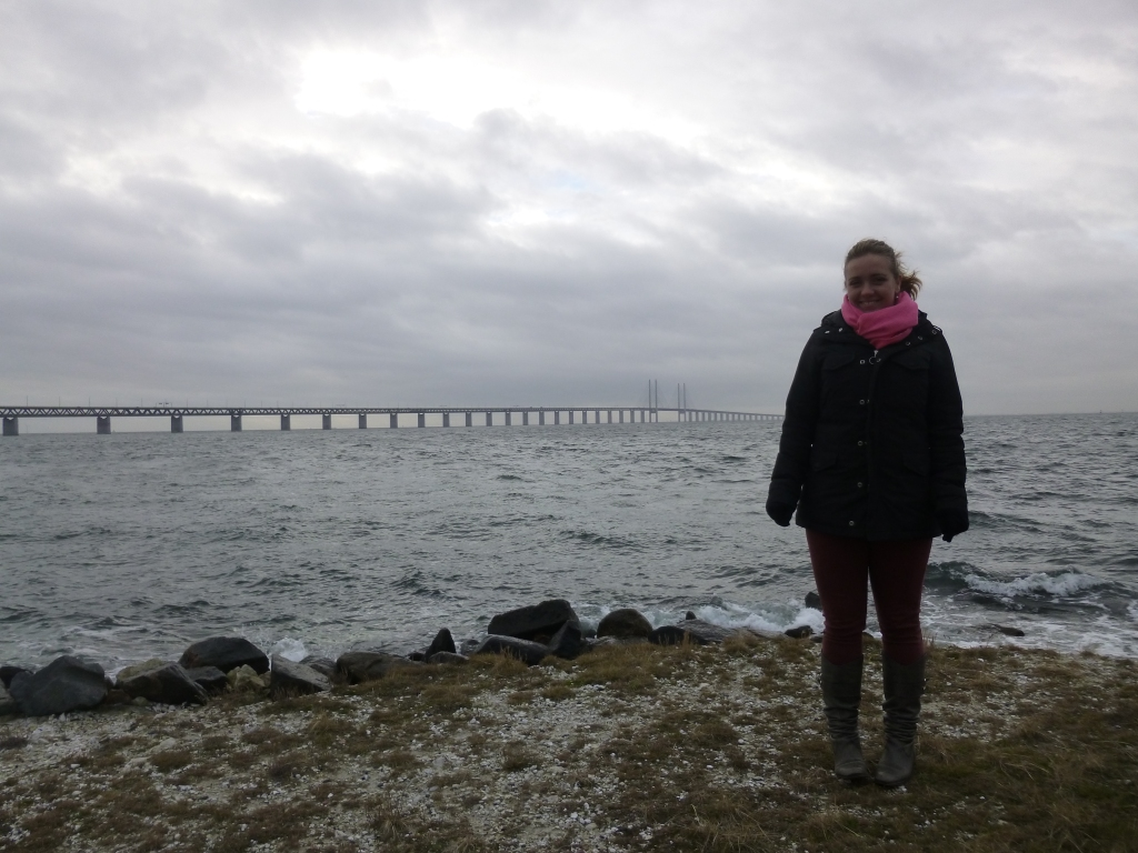 The Øresund Bridge in the distance