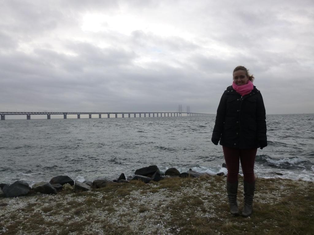 The Øresund Bridge in the distance